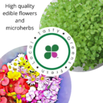 Edible flowers and microherbs